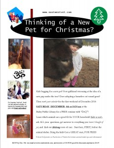 Pets for Christmas flyer